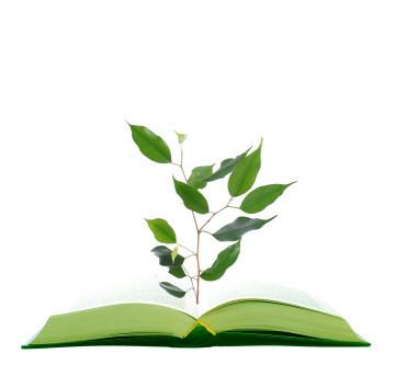 sustentabilidade ética